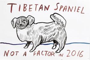 Tibetan Spaniel drawing by Dave Eggers